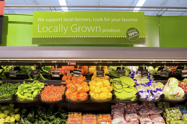 discount grocery store business plan