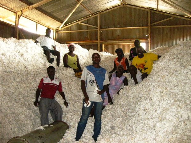 Ugandan organic cotton