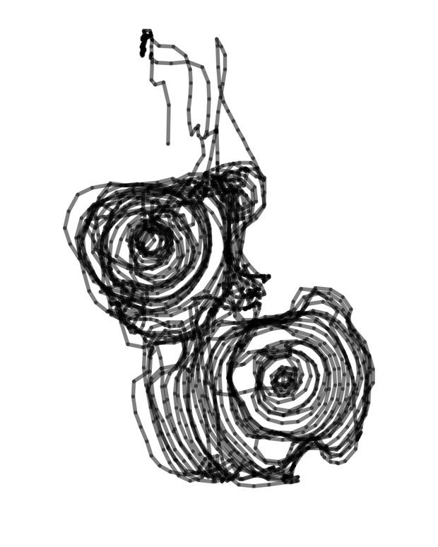 Lawn 2002 Spiral Press