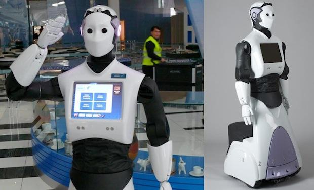 REEM robots