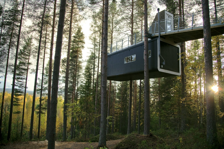 Sweden U0026 39 S Treehotel  A Getaway For Forest Sprites Who Only