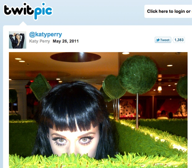 Katy Perry Twitpic