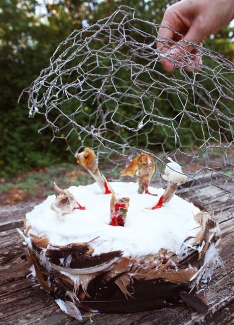 Bird Flu Feather Cake