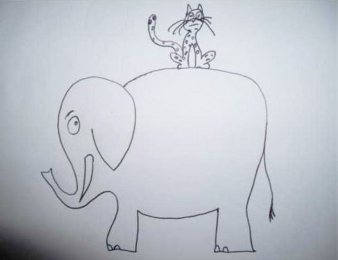 Cheetah on Elephant