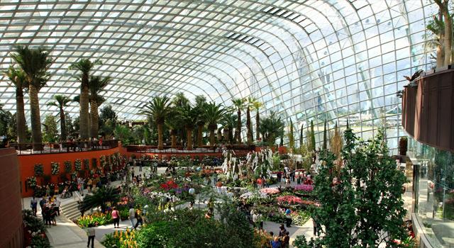 A Futuristic Singapore Garden That Reinvents The City