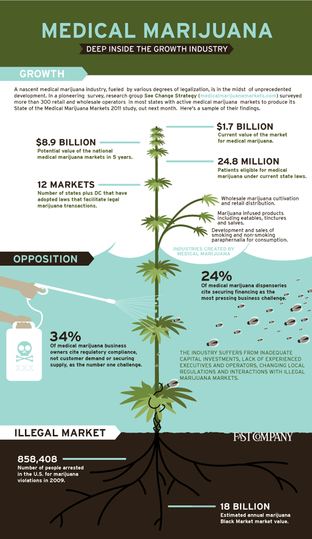 Marijuana Business Potential Unearthed In Groundbreaking