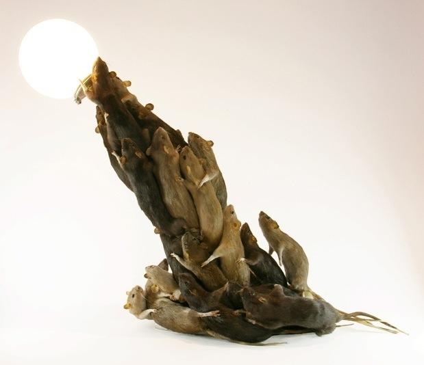 Rat lamp