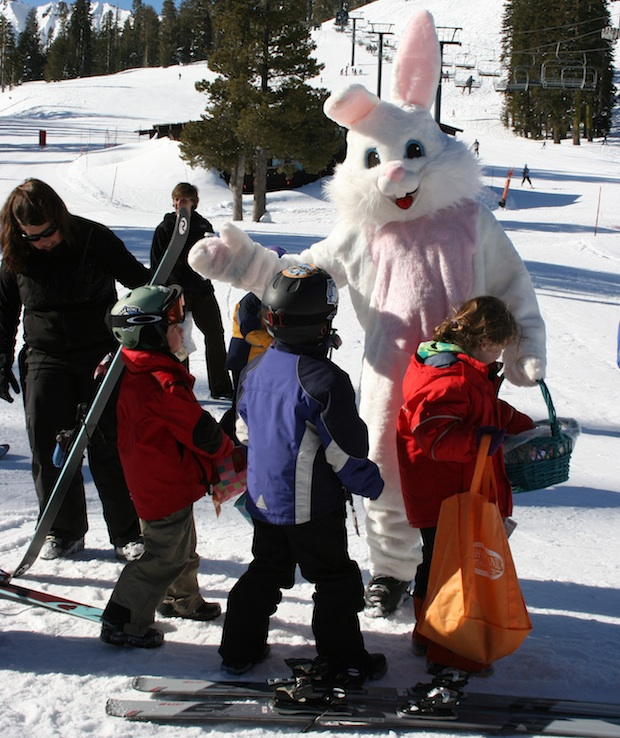 Easter bunny on the ski slopes