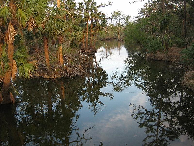 Bayou Metairie