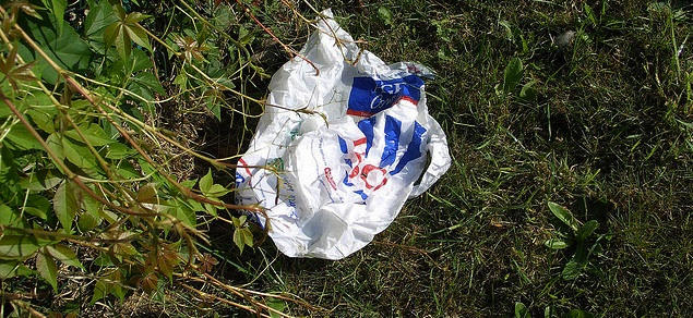 discarded plastic bag