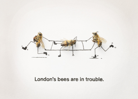 London bee postcard