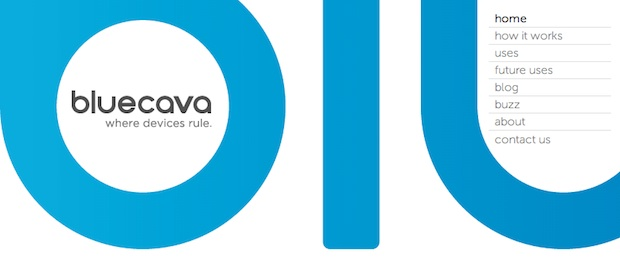 BlueCava