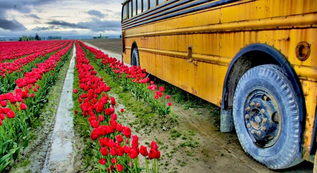 Why America Bleeds For Karen Klein, Bullied Bus Monitor