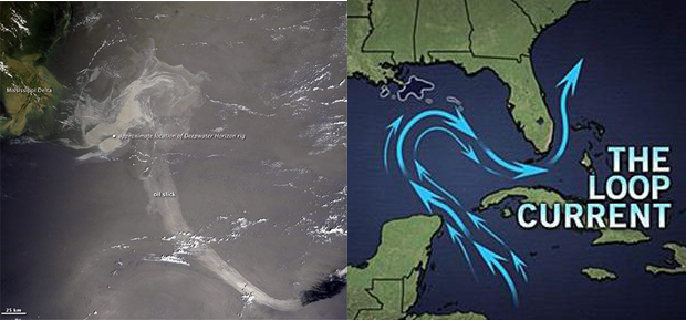 AccuWeather Gulf oil spill