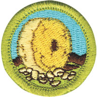 Boys Scouts invention badge