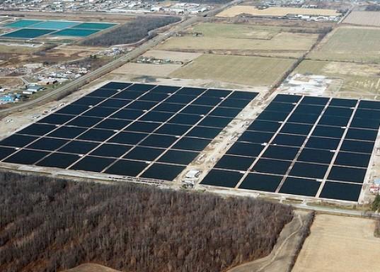 Sarnia solar project