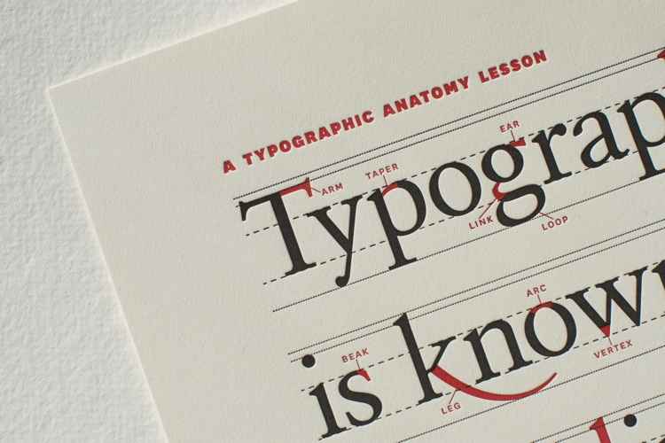 Infographic Of The Day A Visual Dictionary For Type Fans